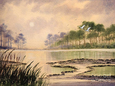 Cypress Swamp Painting - Sunrise - St Marks Nwr by Bill Holkham