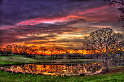 Photograph - Sunrise Surprise Tree Reflections by Reid Callaway