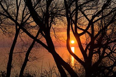 Sunrise Through The Willows - Lake Ontario Toronto Canada  Art Print