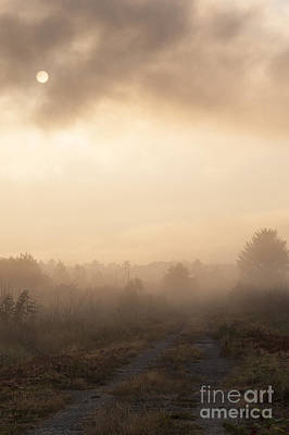 Photograph - Sunrise With Backroad In Fog by Jim Corwin