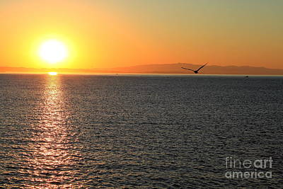 Photograph - Sunrise1 by Theresa Ramos-DuVon