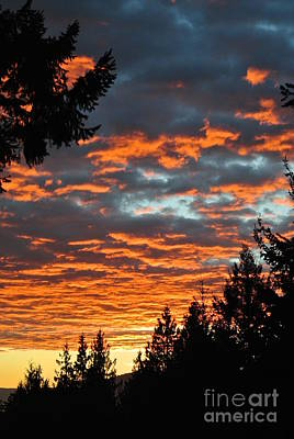 Photograph - Sunset 1- Pender Island by Sharron Cuthbertson