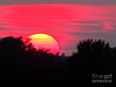 Open Impressionism California Desert - Sunset 365 17 by Tina M Wenger