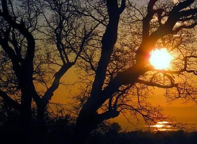 Photograph - Sunset Above Rice Fields by Debra Madonna