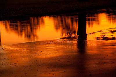 Photograph - Sunset After Rain by Darryl Dalton