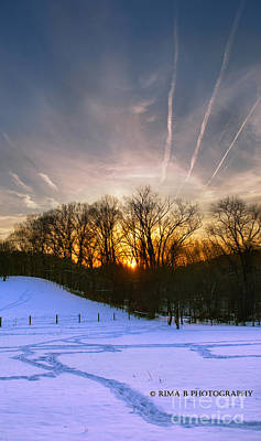 Photograph - Sunset And Snow by Rima Biswas