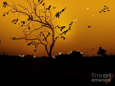 Sunset And Tree Art Print by Artist Nandika  Dutt