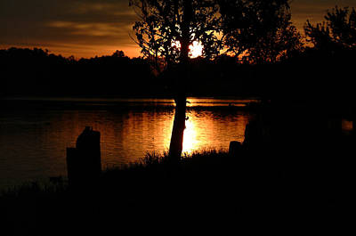 Photograph - Sunset And Tree by T F McDonald