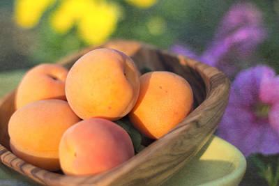 Photograph - Sunset Apricots by Cathie Richardson