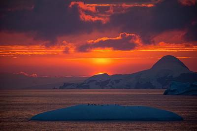 Snow-covered Landscape Photograph - Sunset At 11pm In Antarctica by Peter Menzel