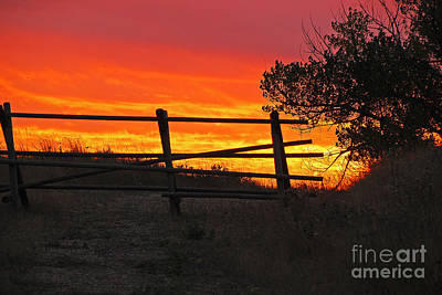 Photograph - Sunset At Bear Butte by Mary Carol Story