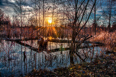 Photograph - Sunset At Beaver Pond by Gene Sherrill
