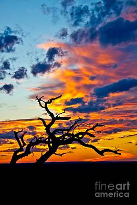Sunset At Enchanted Rock Art Print