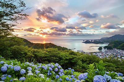 Green Color Photograph - Sunset At Hydrangea Hills by Tommy Tsutsui