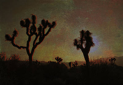 Photograph - Sunset At Joshua Tree by Sandra Selle Rodriguez