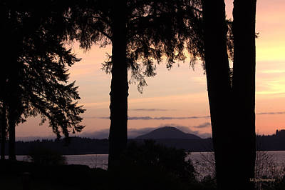 Photograph - Sunset At Lake Quinault by Jeanette C Landstrom