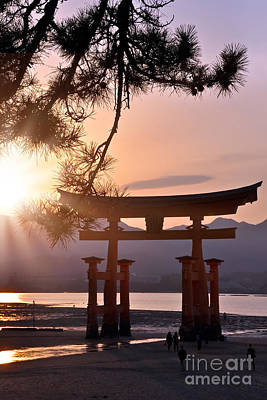 Tori Photograph - Sunset At Miyajima by Delphimages Photo Creations