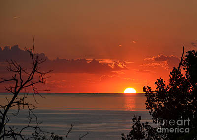 Wall Art - Photograph - Sunset At Mount Baldy by Susan Montgomery