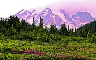 Photograph - Sunset At Mt. Rainier by Athena Mckinzie
