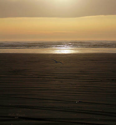 Photograph - Sunset At Ocean Shores II by Jeanette C Landstrom