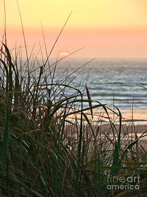 Photograph - Sunset At Oregon Dunes by L J Oakes