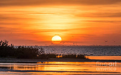 Most Popular Photograph - Sunset At Padre Island by Tod and Cynthia Grubbs