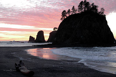 Photograph - Sunset At Rialto Beach 1 by Jill Westbrook