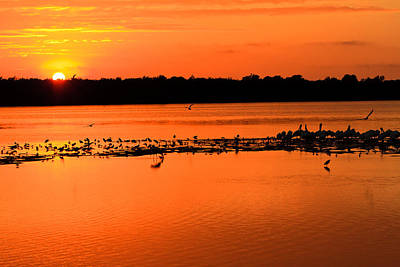 Photograph - Sunset At Sanibel  by Ben Graham