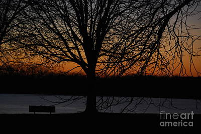 Photograph - Sunset At The Park by Mark McReynolds