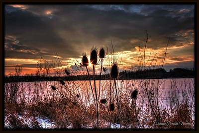 Sunset At The Pond 4 Art Print