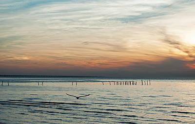 Photograph - Sunset Bay by Elsa Marie Santoro