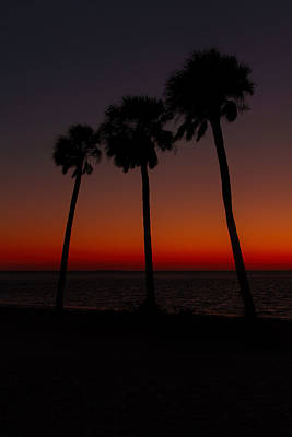 Photograph - Sunset Beach Silhouette by J Michael Nettik