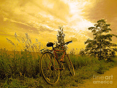 Sunset Biking Art Print