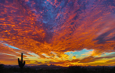 Photograph - Sunset Bliss by Stacy LeClair