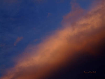 Photograph - Sunset Blue by Donna Blackhall