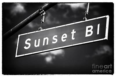 Photograph - Sunset Boulevard by John Rizzuto