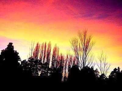Photograph - Sunset by Brandon Garcia