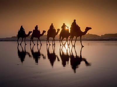 Sunset Camel Trek On The Beach Art Print