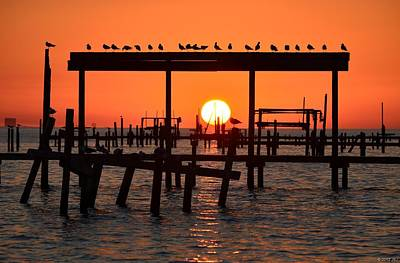 Photograph - Sunset Colors On Clear Santa Rosa Sound With Gulls by Jeff at JSJ Photography