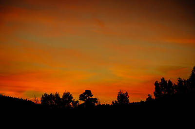 Photograph - Sunset Colors On Fire by Penny Lisowski
