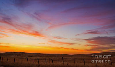Photograph - Sunset Colors by Rima Biswas