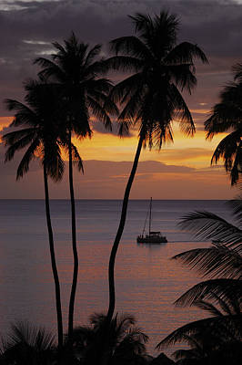 Photograph - Sunset Cruise In St Lucia by John Colley