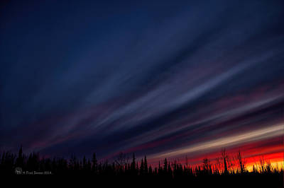Photograph - Sunset Dan Creek Alaska by Fred Denner