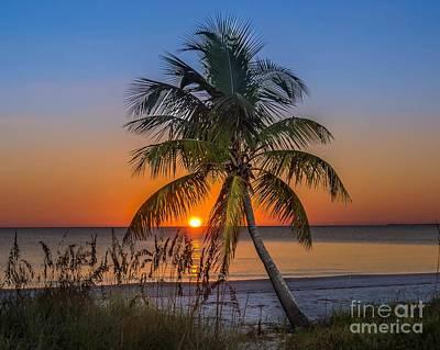 Romo Photograph - Sunset by David Omohundro