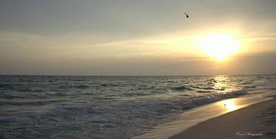 Panama City Beach Photograph - Sunset Down by Debra Forand