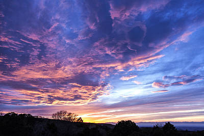 Queen - Sunset Drama by Diana Powell