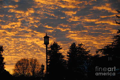 Photograph - Sunset Drama by Jacqueline M Lewis