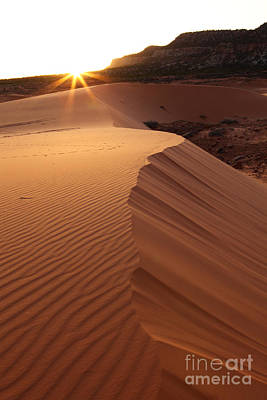 Photograph - Sunset Dune by Bill Singleton