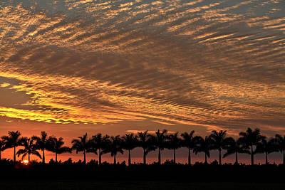 Sunset Florida Art Print