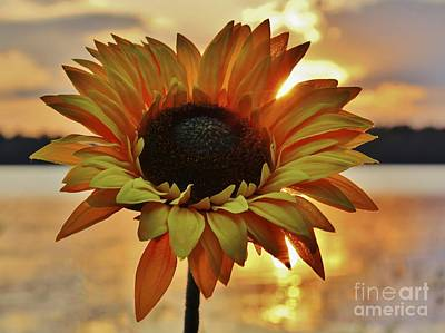 Sunset Flower Art Print